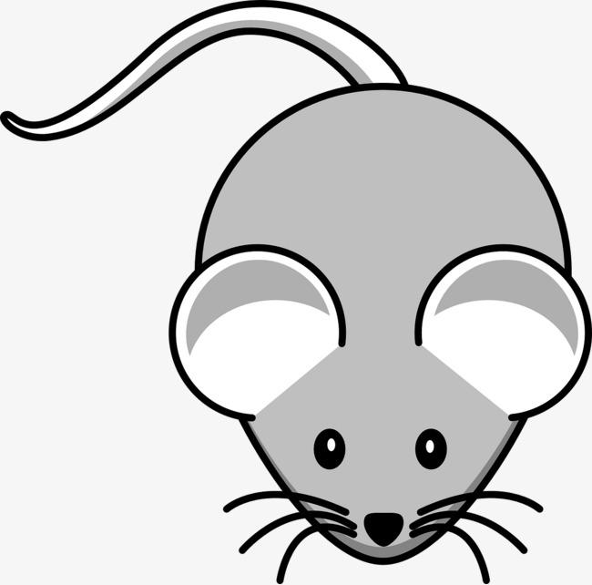 灰色  老鼠  动物  爬行             此素材是90设计网官方设计出品