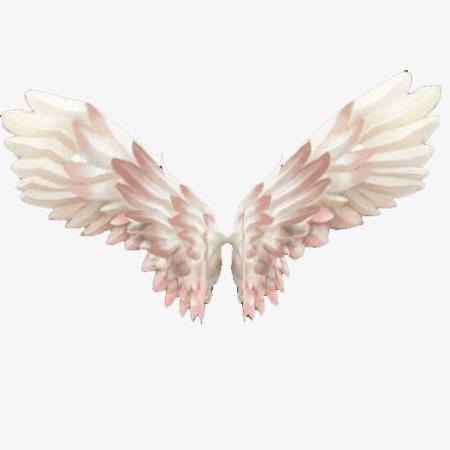 翅膀手绘素材