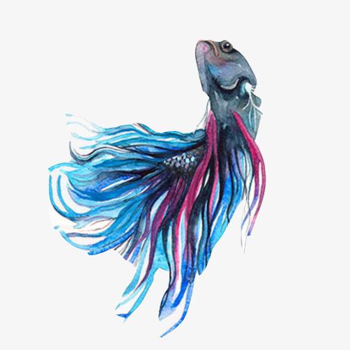 金鱼创意手绘素材图片