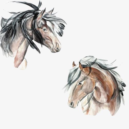 骏马头像素材图片