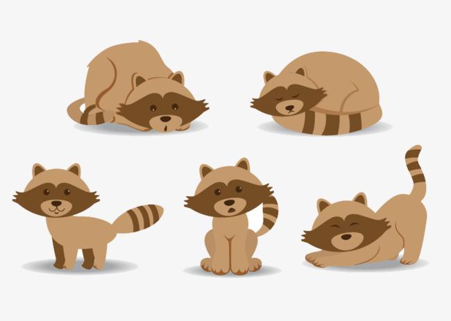 小浣熊手绘矢量图