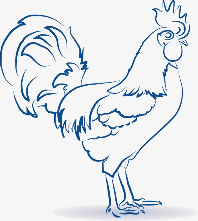 矢量手绘素描大公鸡素材图片免费下载 高清卡通手绘psd 千库网 图片编号6182451