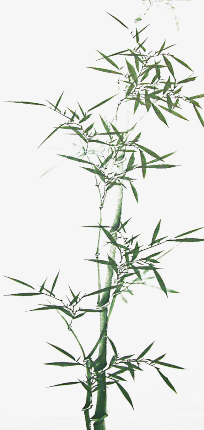 竹子水墨素材