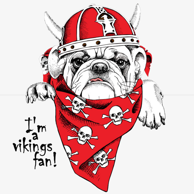 红色海盗狗