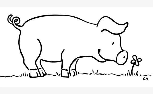 手绘的卡通闻花的猪
