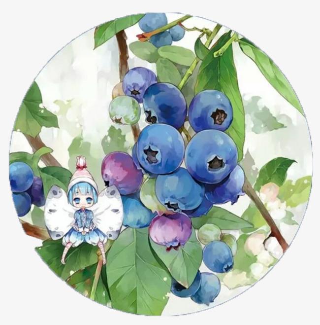 手绘可爱蓝莓拟人