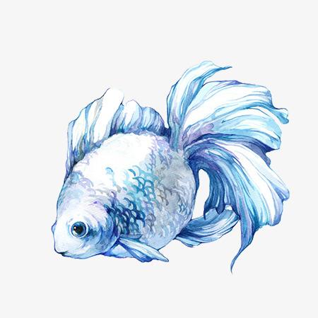 蓝色手绘鱼png素材-90设计图片