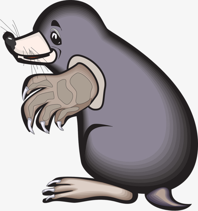 带步骤地鼠简笔画