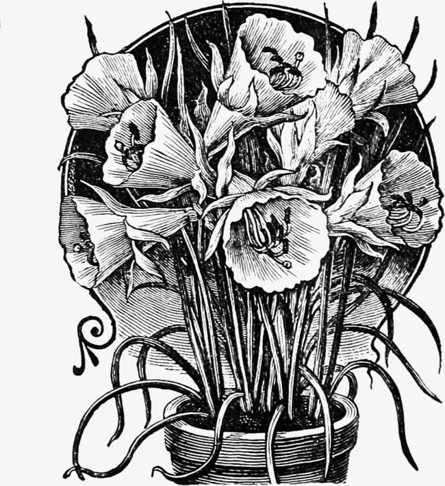 手绘卡通_手绘花盆png素材-90设计