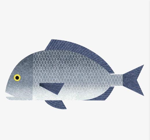 日本手绘鱼