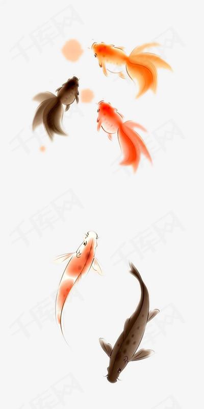 手绘鲤鱼图片素材图片免费下载 高清装饰图案png 千库网 图片编号6463046图片