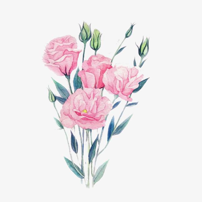 手绘粉色玫瑰花免抠素材