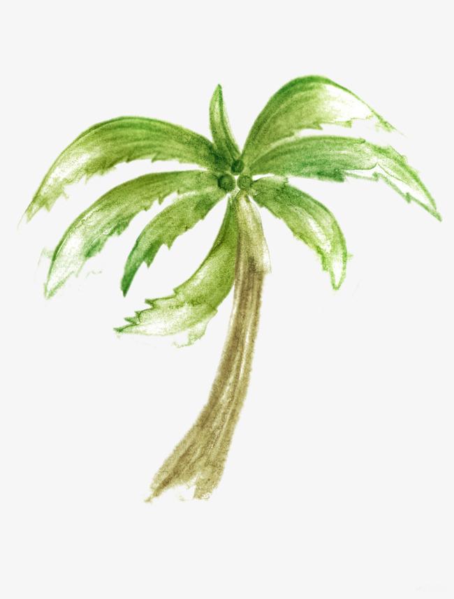 手绘椰子树图片素材