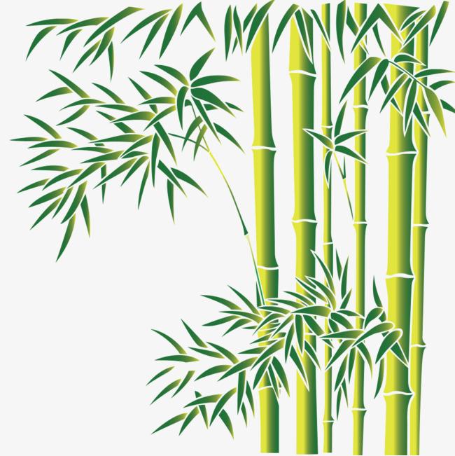 图片 > 【png】 竹林素材  分类:手绘动漫 类目:其他 格式:png 体积