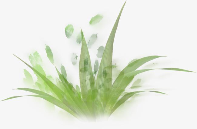 绿色手绘小草