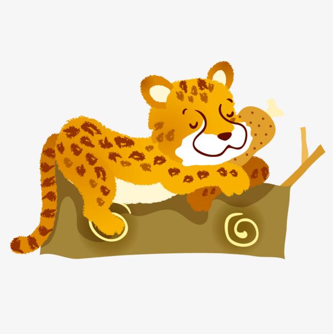 黄色动物老虎睡觉