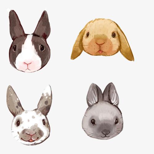 小兔子各种表情头像手绘