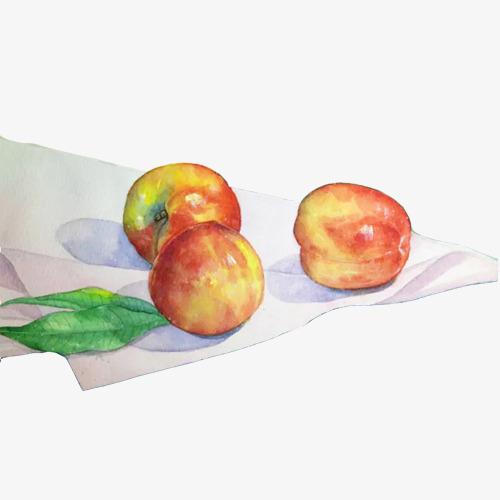 油桃手绘画素材图片