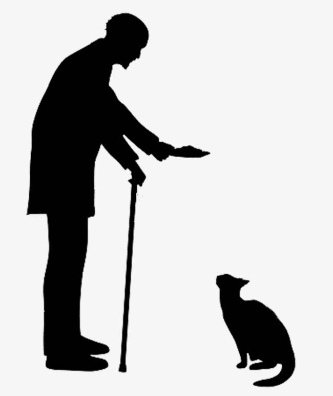Man Walking Cat Video