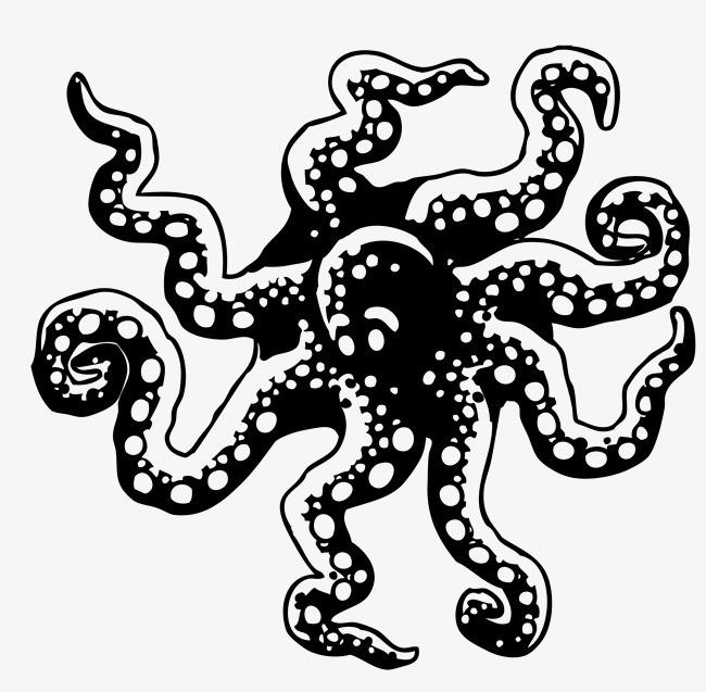 手绘章鱼矢量图