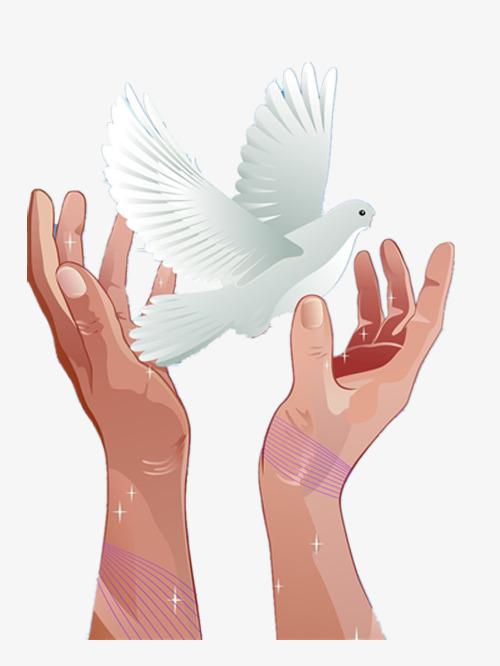 双手托起白鸽素材图片免费下载_高清卡通手绘png_千库