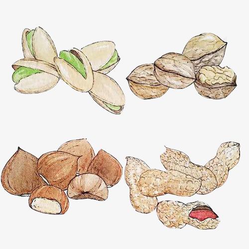 坚果小吃手绘素材图片