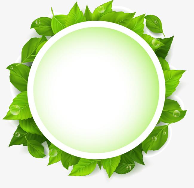 绿色树叶矢量文字输入框