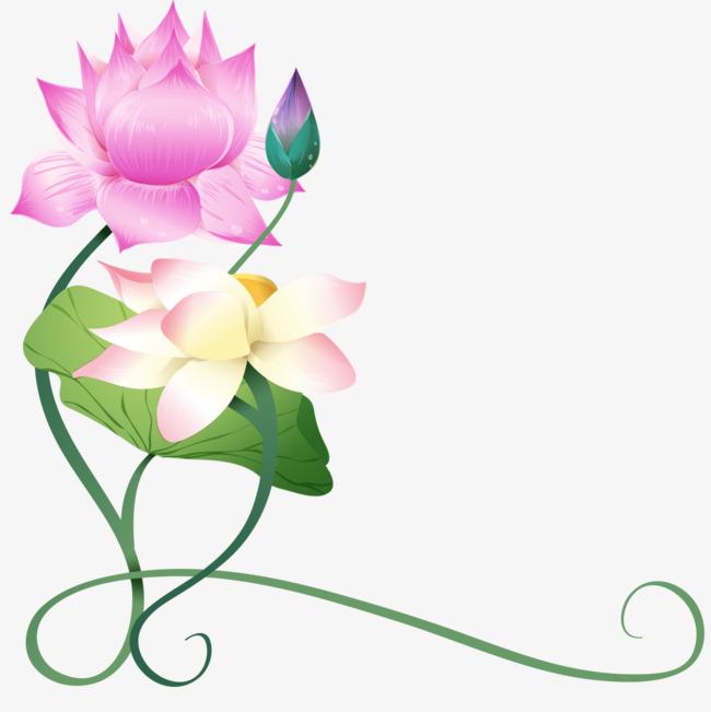 莲花背景png素材-90设计