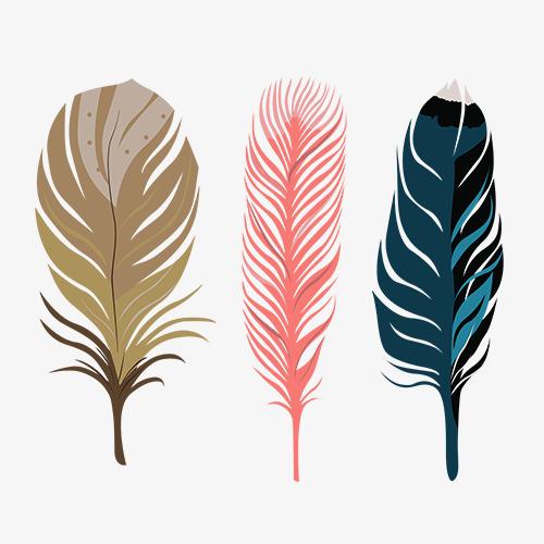 彩色手绘羽毛