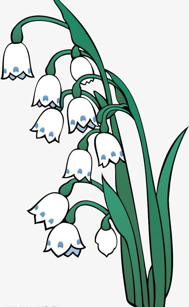 简约手绘卡通铃兰花
