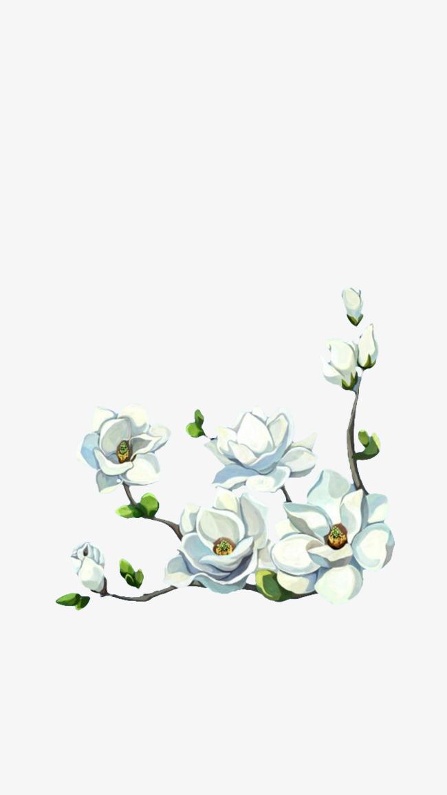 素白的小花