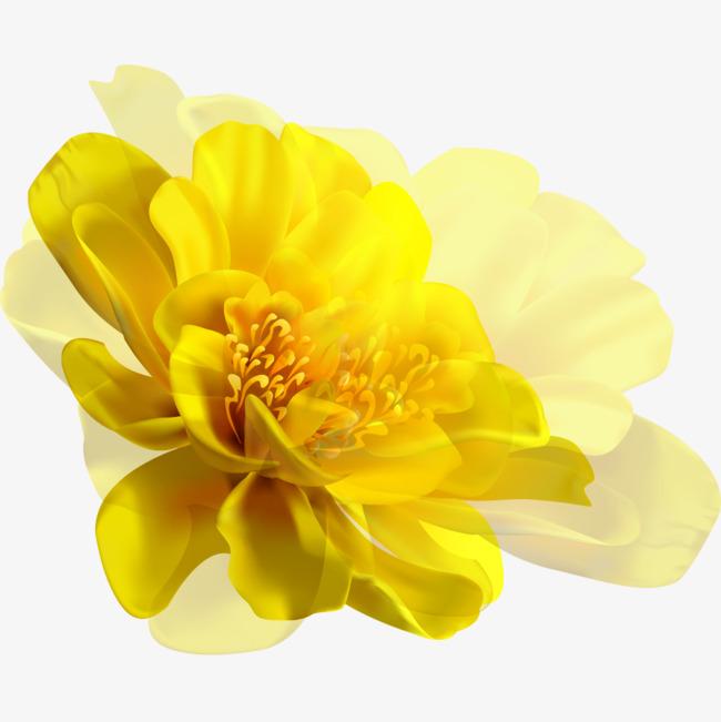 手绘黄花背景图