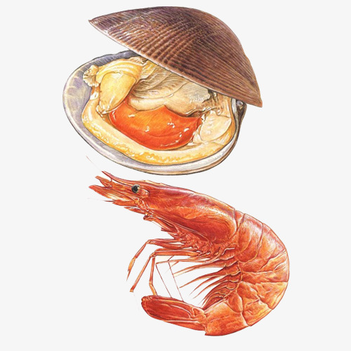 海鲜烧烤手绘画图片素材图片免费下载 高清卡通手绘psd 千库网 图片编号6755724