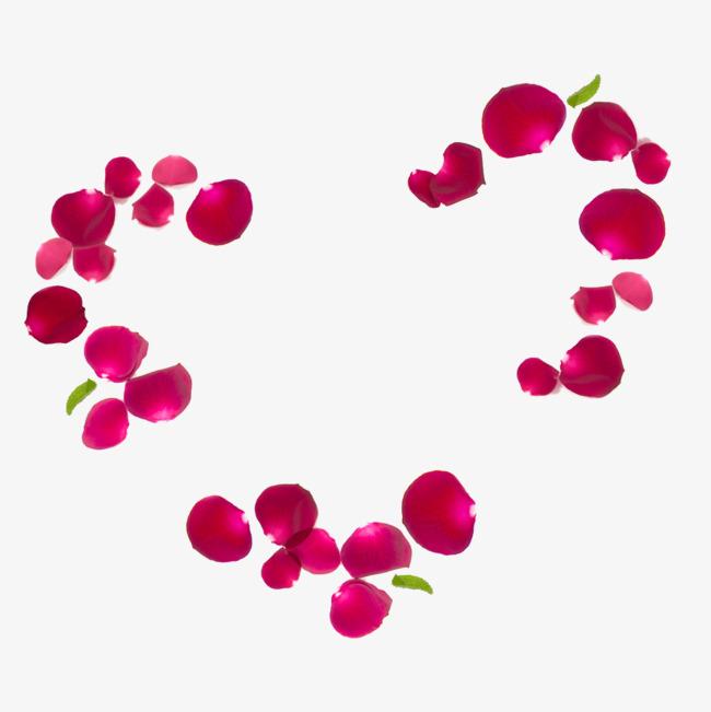 爱心玫瑰花瓣免抠素材