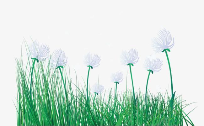 小清新植物【高清装饰元素png素材】-90设计