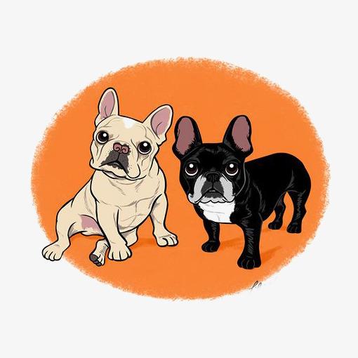 卡通八哥犬图片