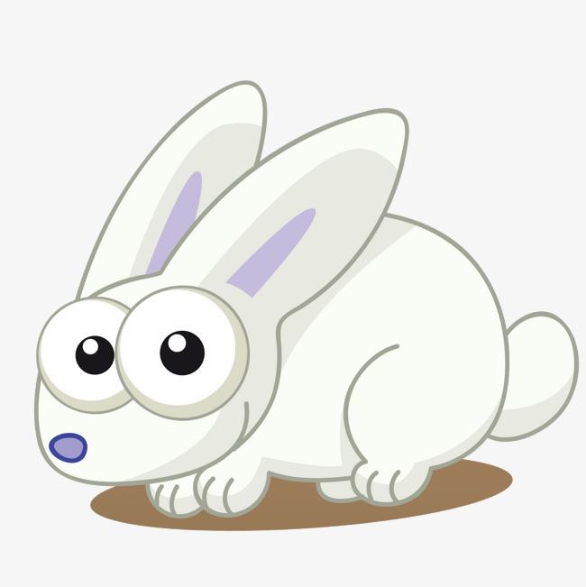 白色可爱卡通兔子