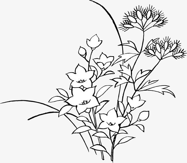 蝴蝶简笔画 步骤 花丛