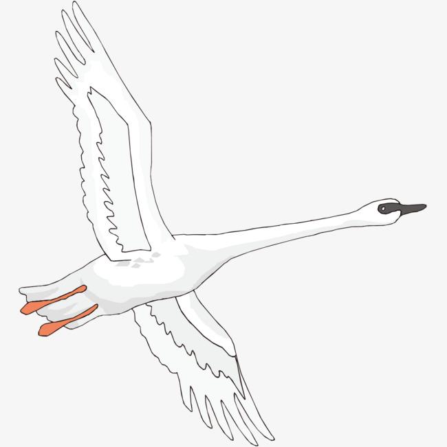传统毛笔手绘天鹅