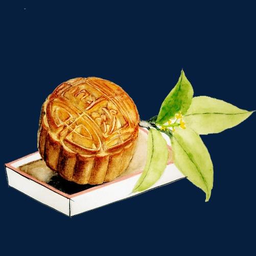 薄荷月饼手绘画素材图片