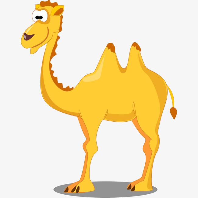 卡通动物i小骆驼图片