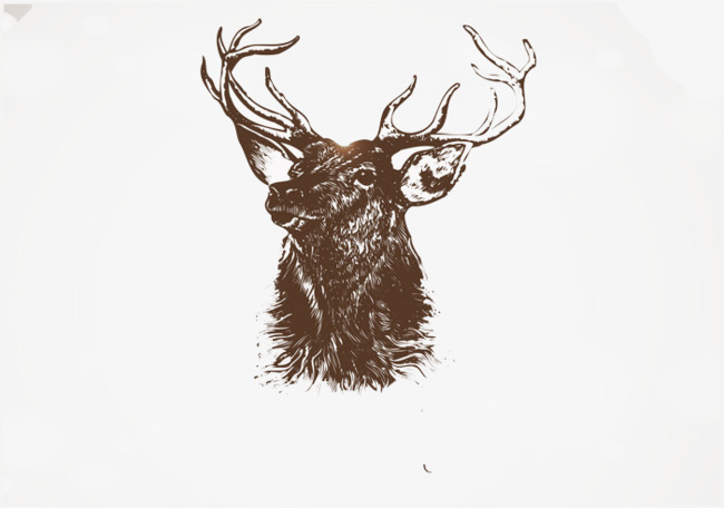 2017唯美纯手绘鹿头