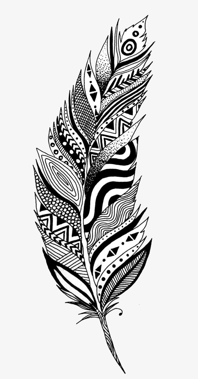 黑白手绘羽毛.