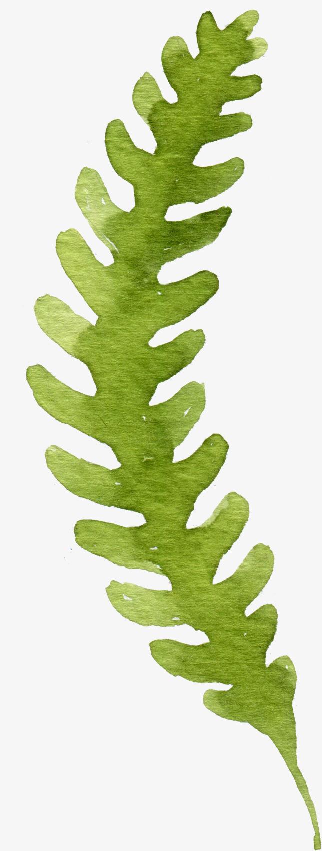 小清新绿色手绘叶子