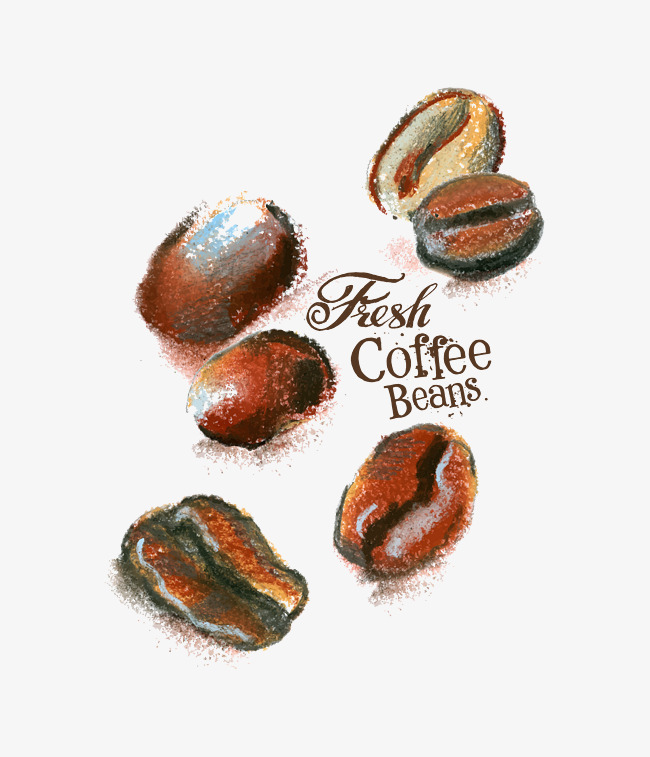 矢量灰色手绘英文咖啡豆