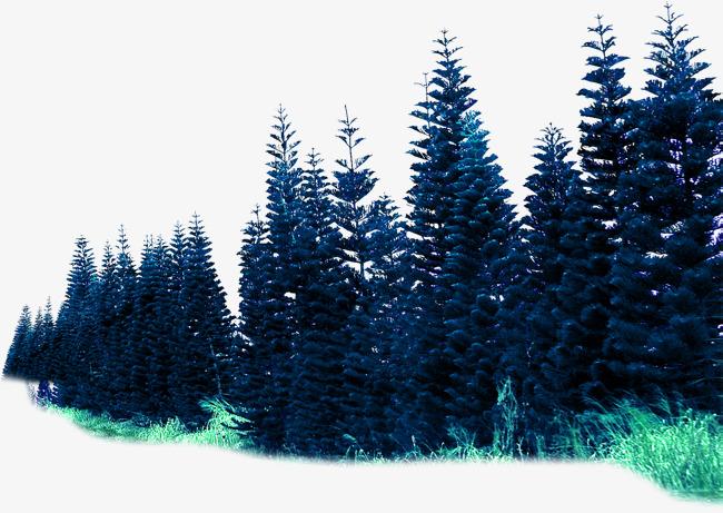 环境渲染效果森林素材【高清装饰元素png素材】-90设计图片