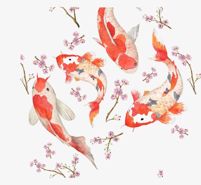 中国风手绘锦鲤png素材-90设计