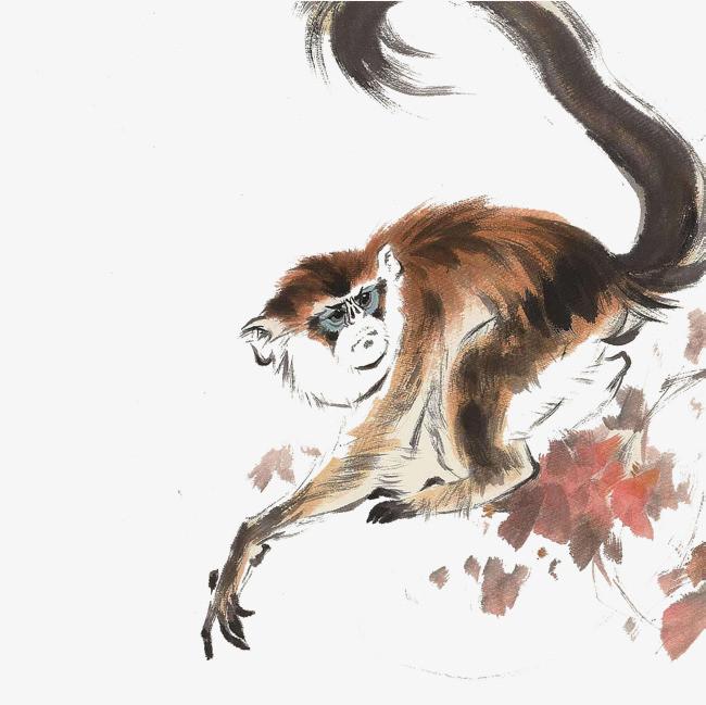 2017手绘国画金丝猴