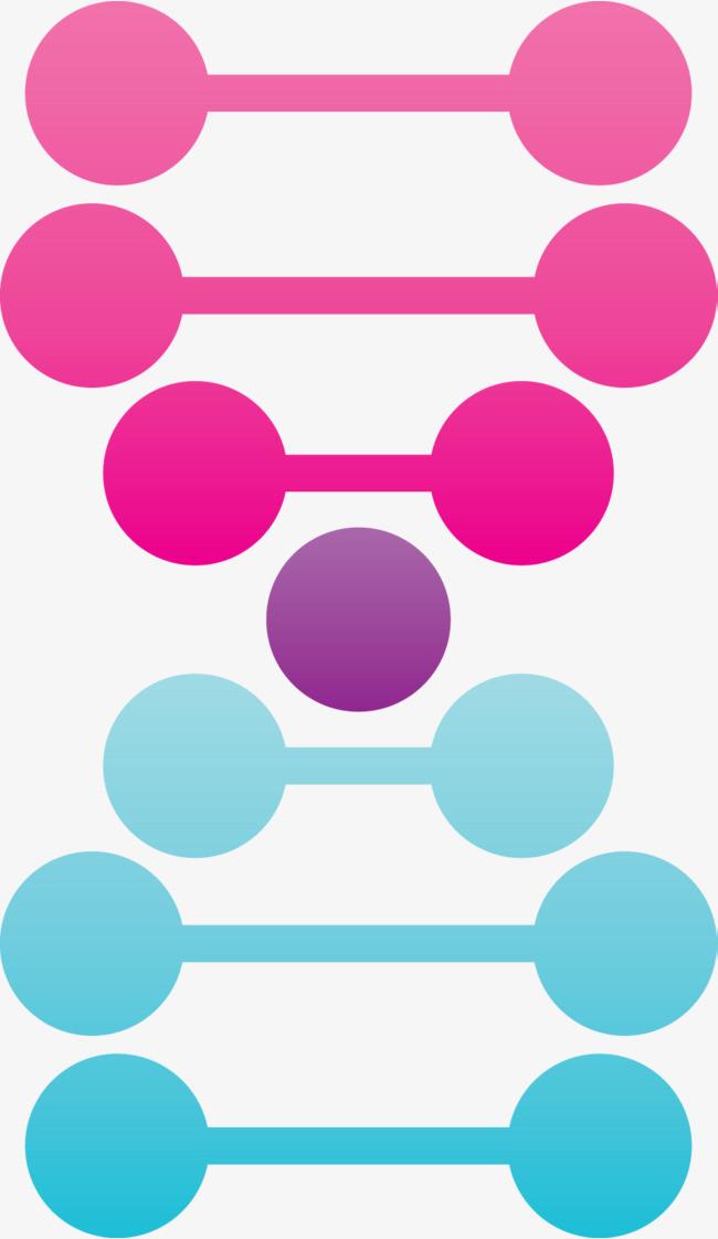 彩色可爱矢量dna双螺旋图形