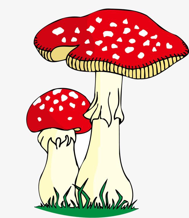 可爱的蘑菇